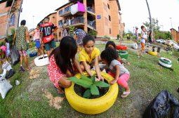 'Prosamim em Movimento' promove plantio de mudas frutíferas e ornamentais na Semana do Meio Ambiente