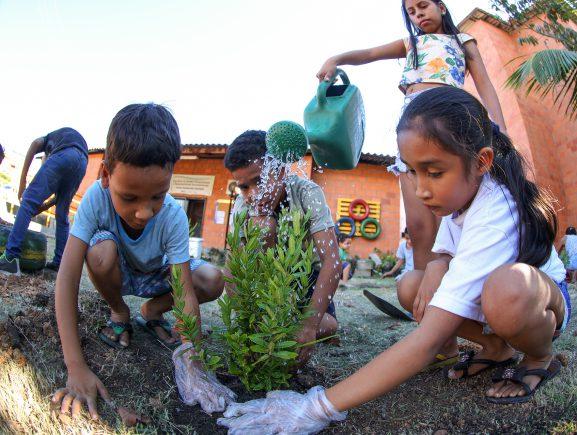 Prosamim realiza plantio de mudas em programação da Semana do Meio Ambiente