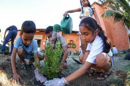 Plantio de mudas em programação da Semana do Meio Ambiente